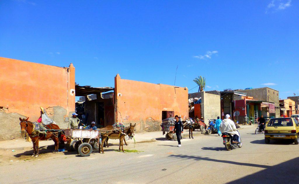 Biking in Marrakesh