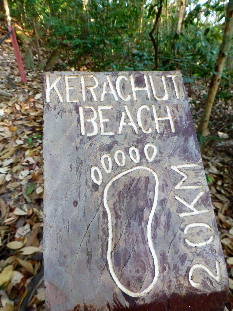 Uitleg over de flora & fauna in het Nationaal Park Pulau Penang, Maleisie
