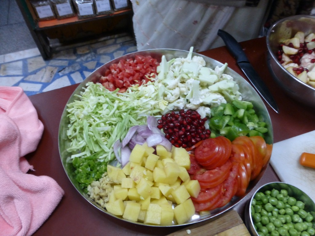 Kookles bij Spice Paradise in Jodhpur, India