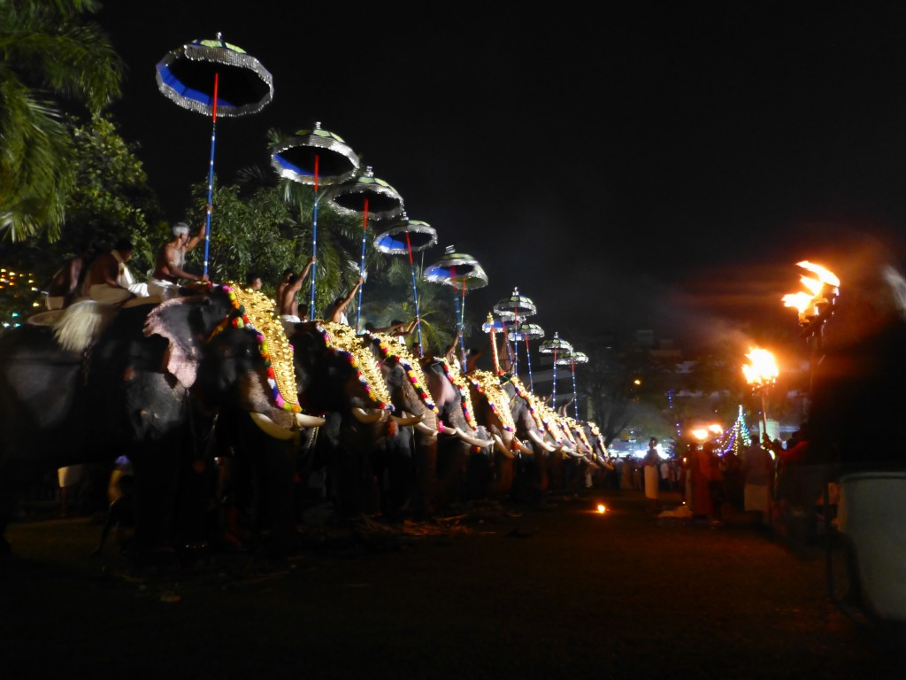 Elephants, Cochin