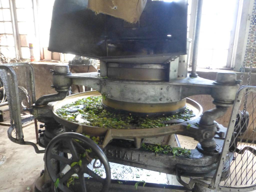 Museum Kolukkumalai Teaplantation - Munnar, Kerala