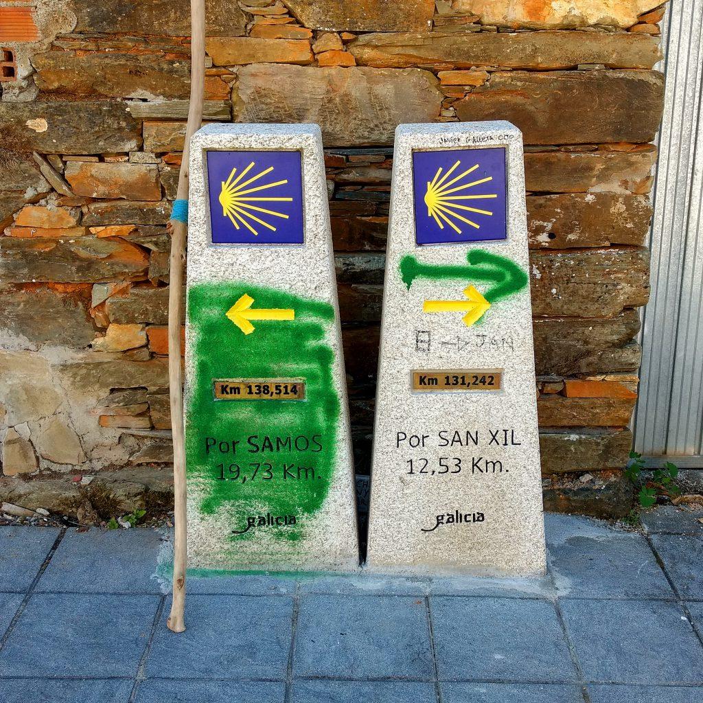 Mijn doel bereikt!! - Camino Frances 780 km afgelegd