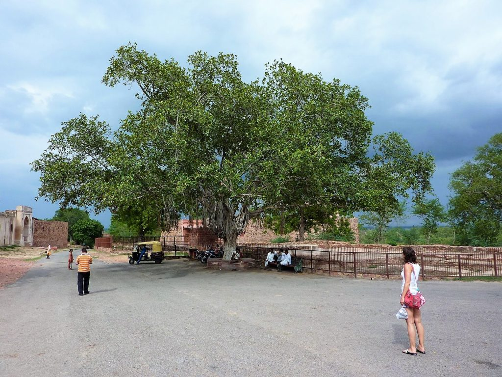 Fatehpur Sikri nabij Agra