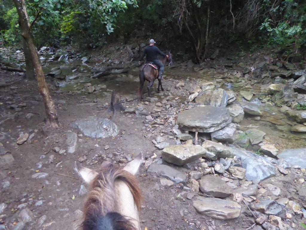Paardrijden in Topes de Collantes