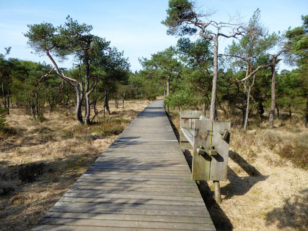 Delden, Twickel - Mooiste Wandelingen Overijssel