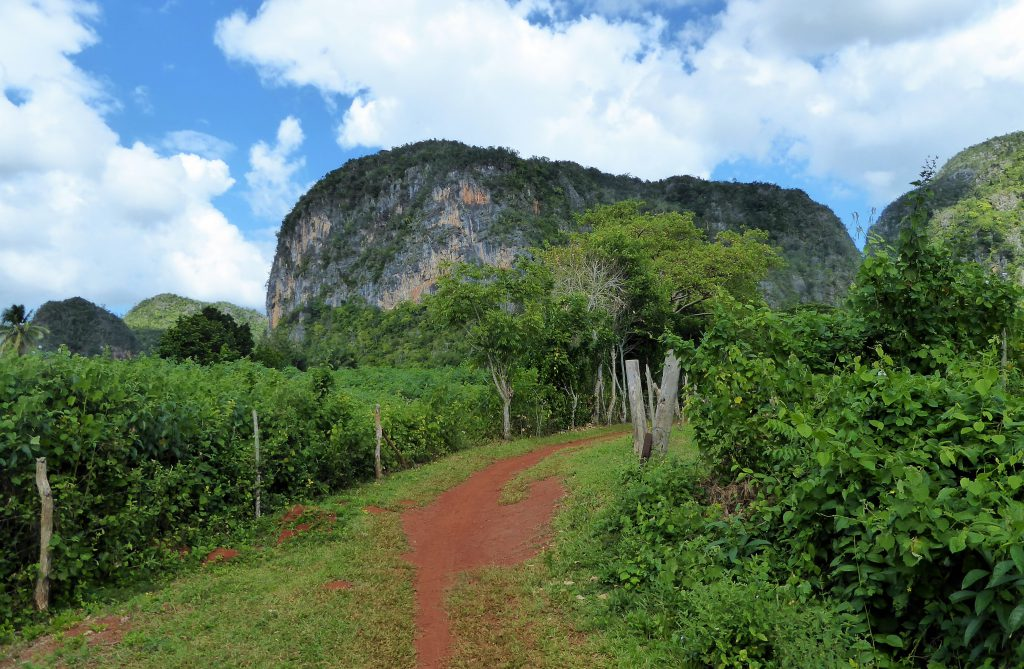 Cycling in the Viñales Valley - Cuba