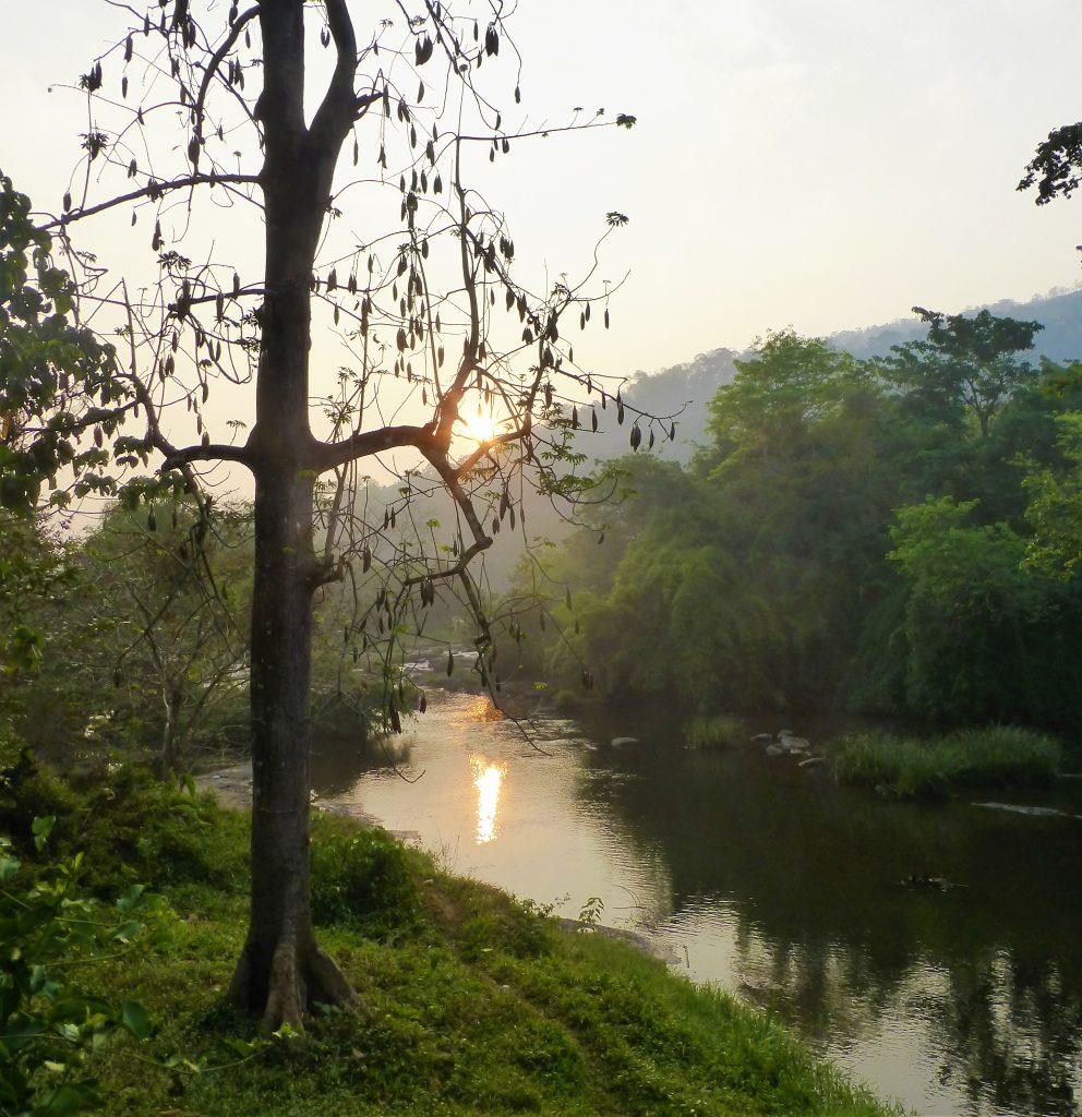 River behind my hotel - Kerala