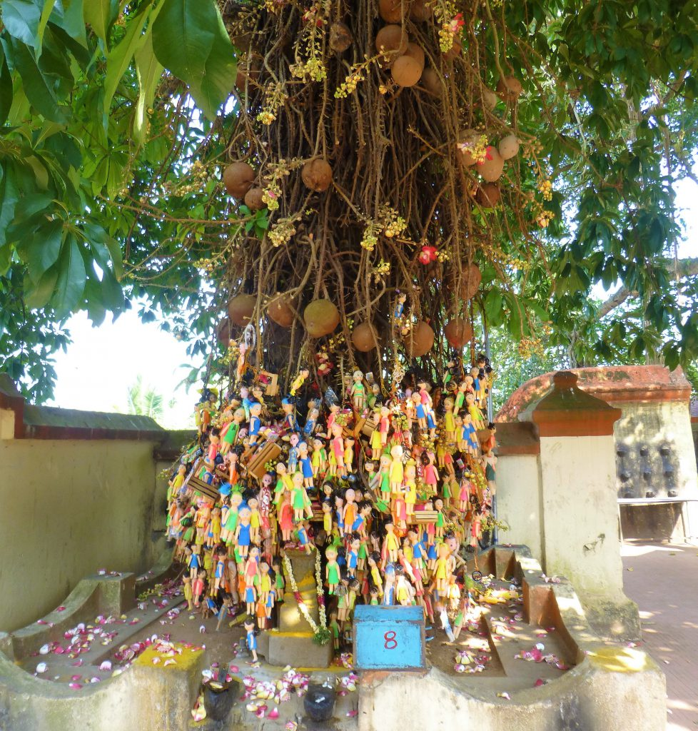 2 weeks Kerala Travel Itinerary - Varkala