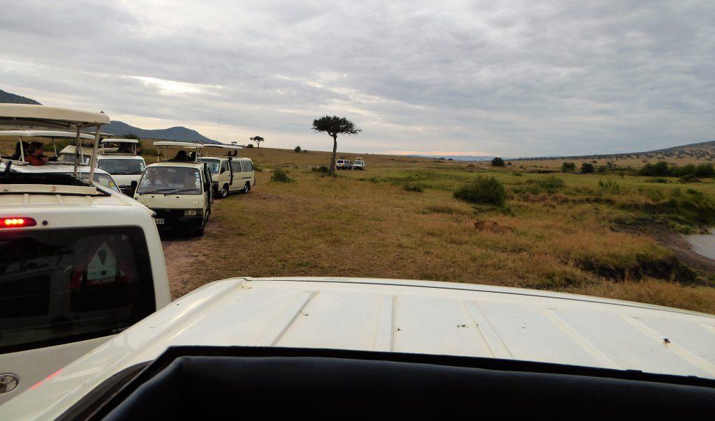 Toerisme in het park Masai Mara - Kenia