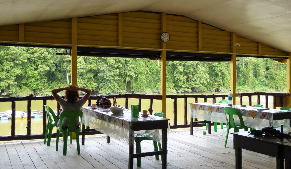 Tanjung Bulat Jungle camp - Borneo