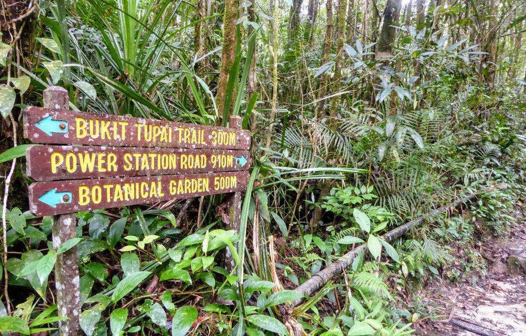 Borneo bezienswaardigheden