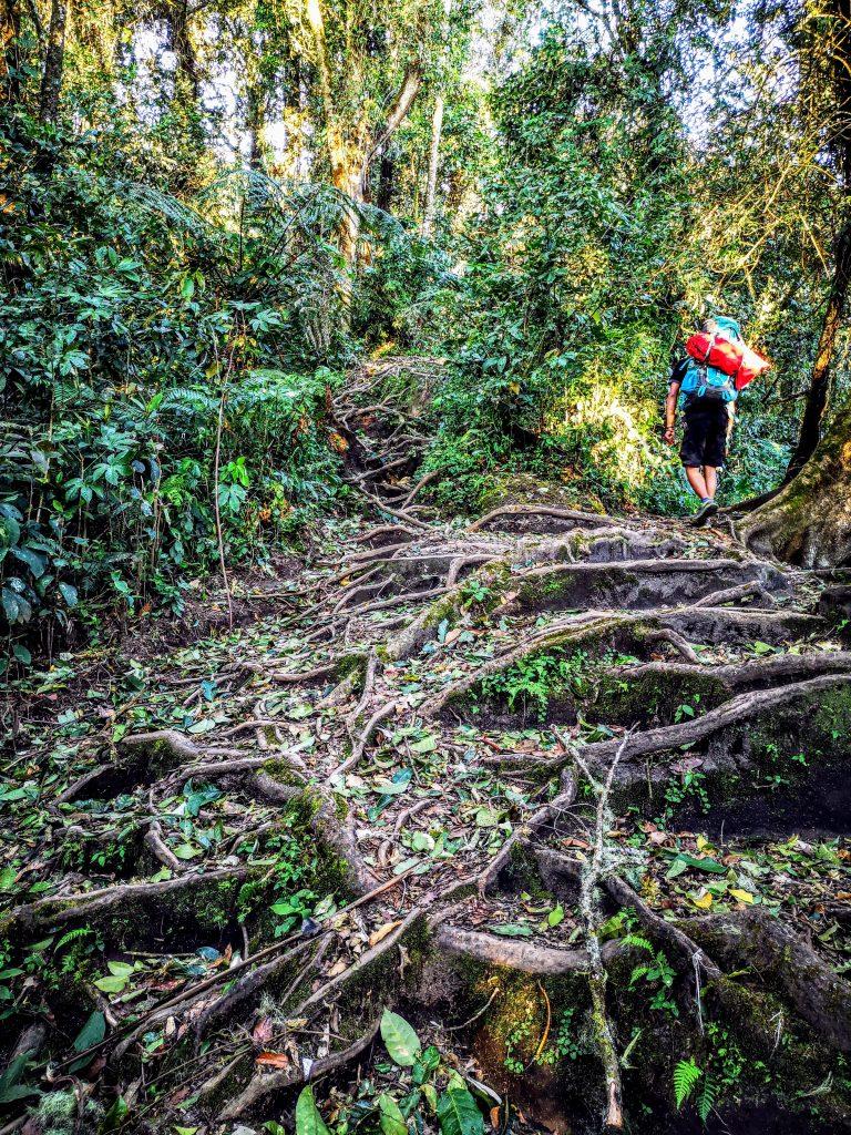 Gunung Marapi - Sumatra, Indonesie