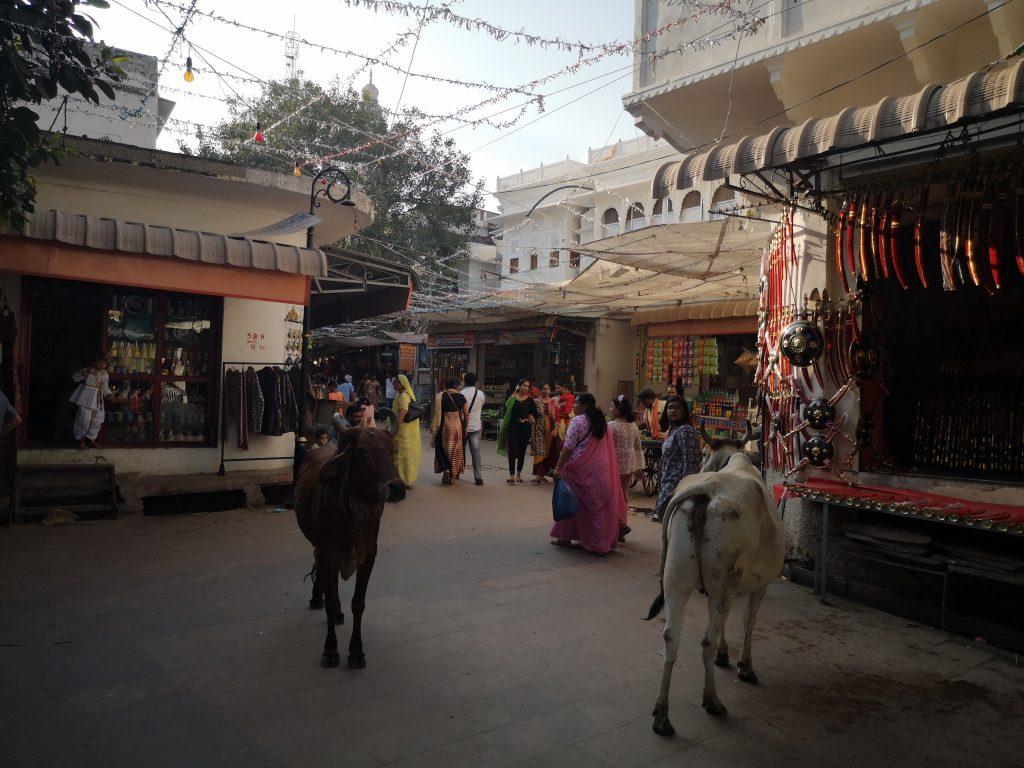 Heilige Stad Pushkar, Rajasthan - India