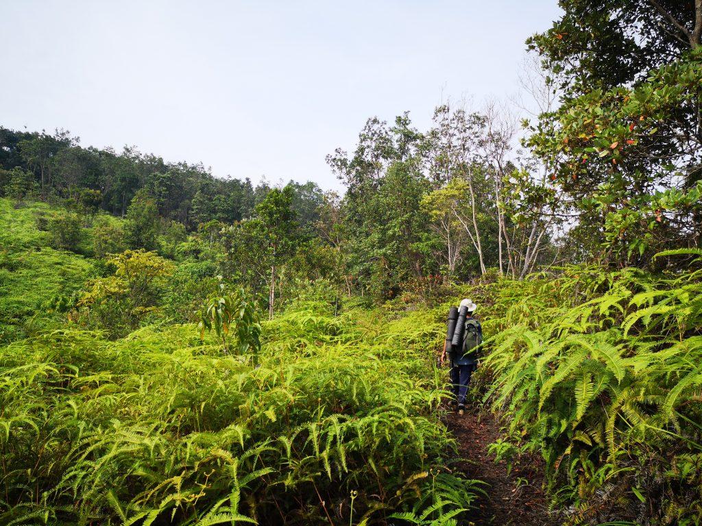 Adventurous Travel - Harau Valley, Sumatra
