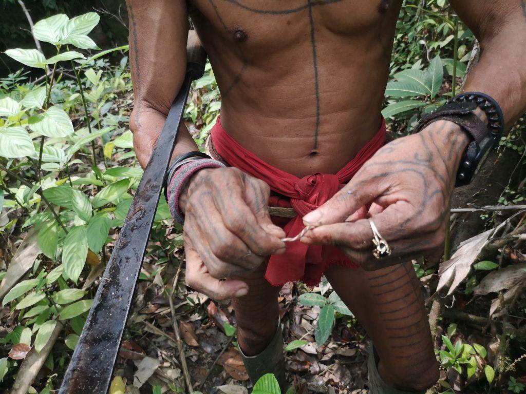 Sjamaan Gresik toont ons een zeer giftige wortel