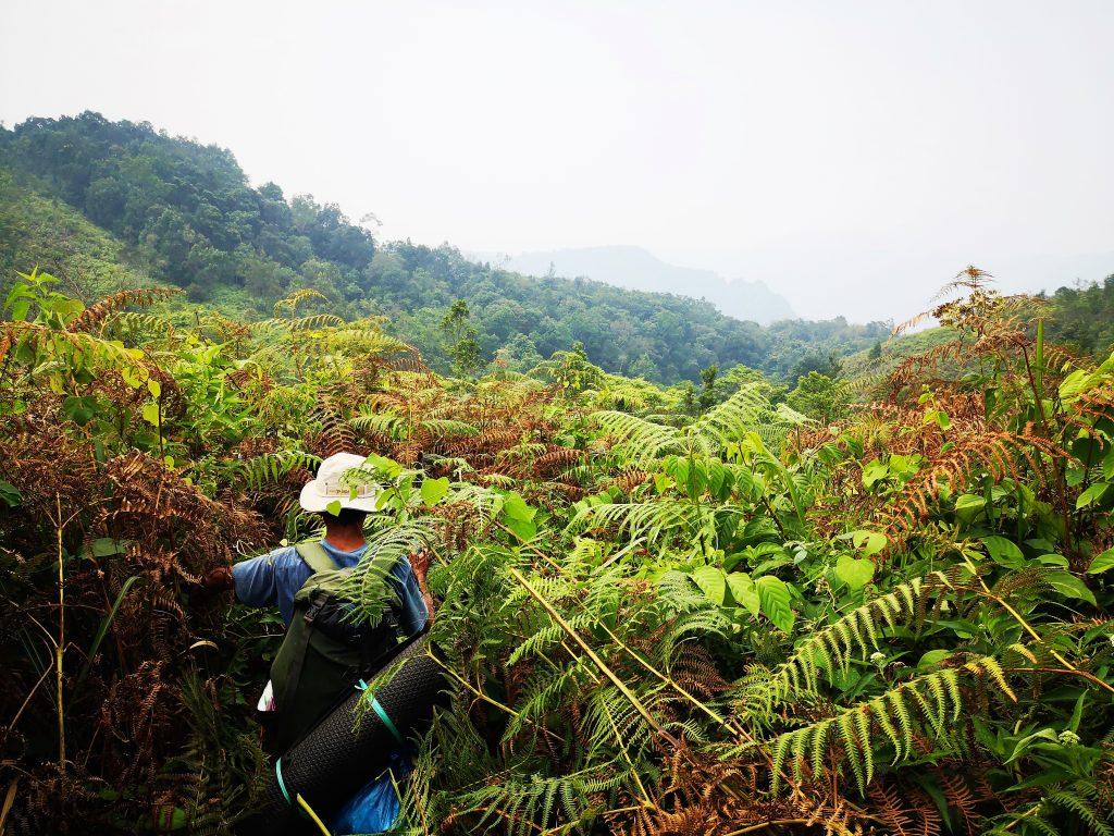 Harau Valley -Sumatra