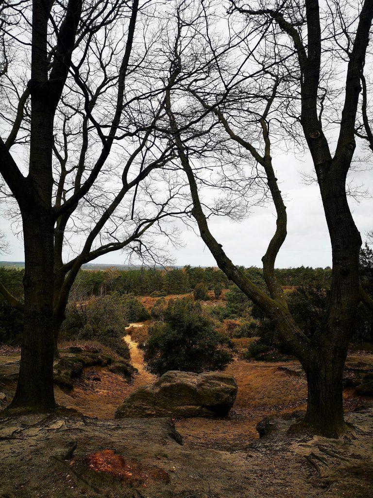 Bergwandeling in Salland - De Dikke Steen