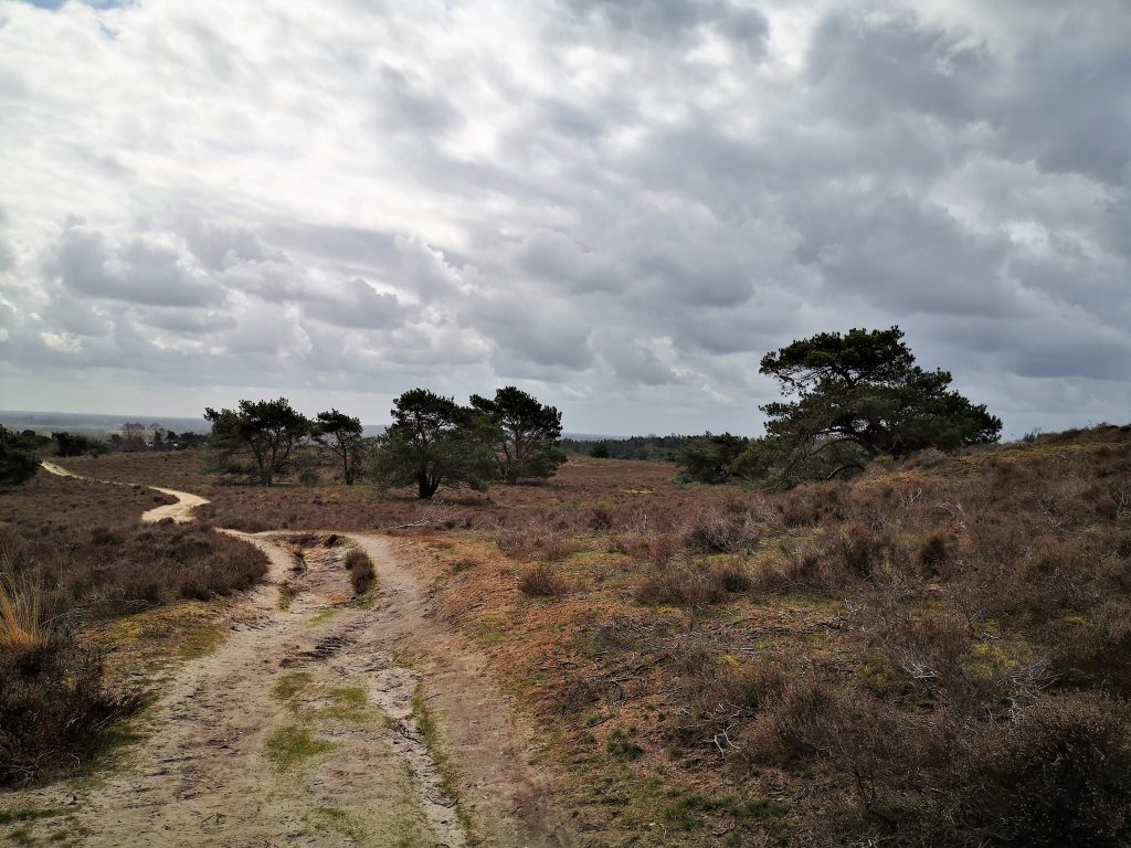 Bergwandeling in Salland - Archemerberg