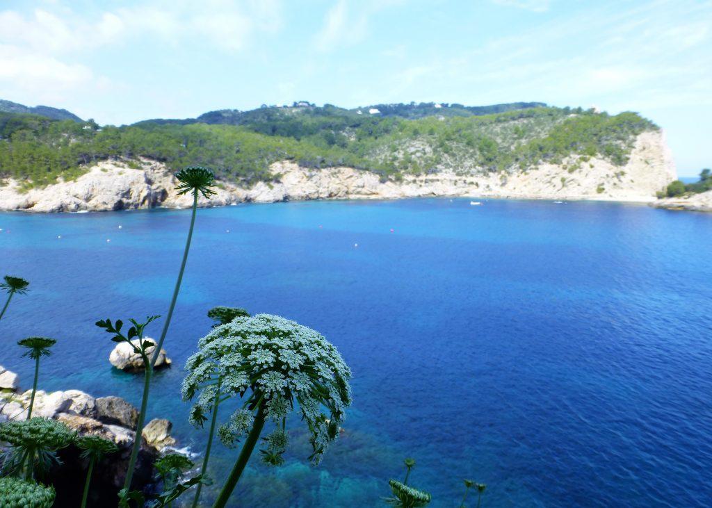 Port de Sant Miquel - Discover Ibiza