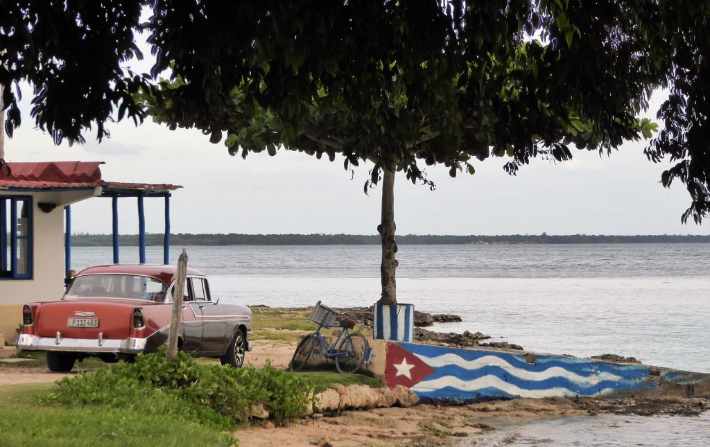 What to do in Playa Larga - Cuba / 4 tips for your stay @ Playa Larga