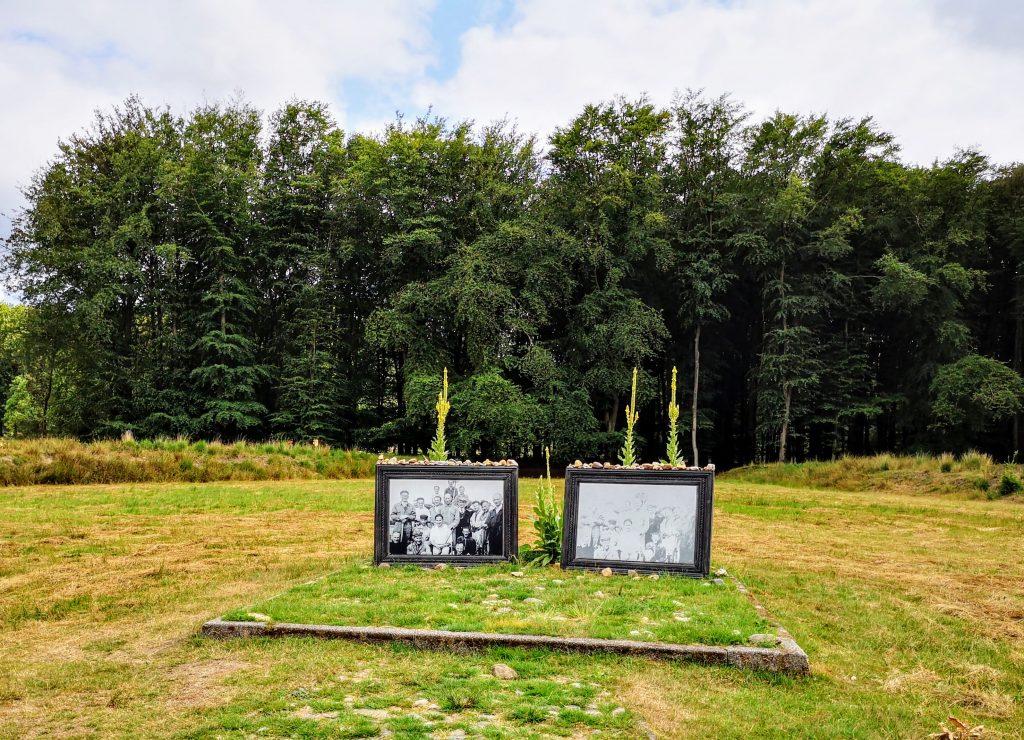 Kamp Twilhaar - Haarle