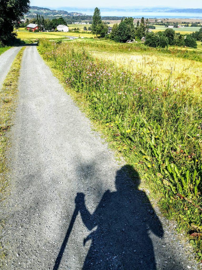 Meditatief Wandelen - Mindful Wandelen