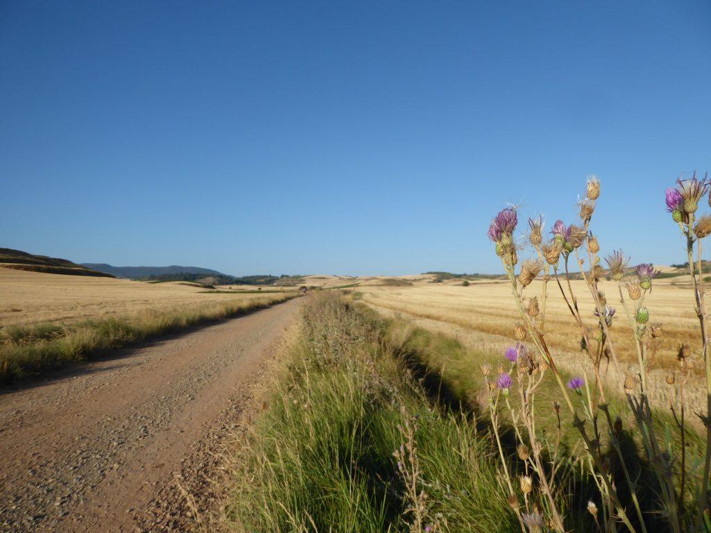 Kilometers lang niets te vinden in de meseta - Camino Frances, Spanje