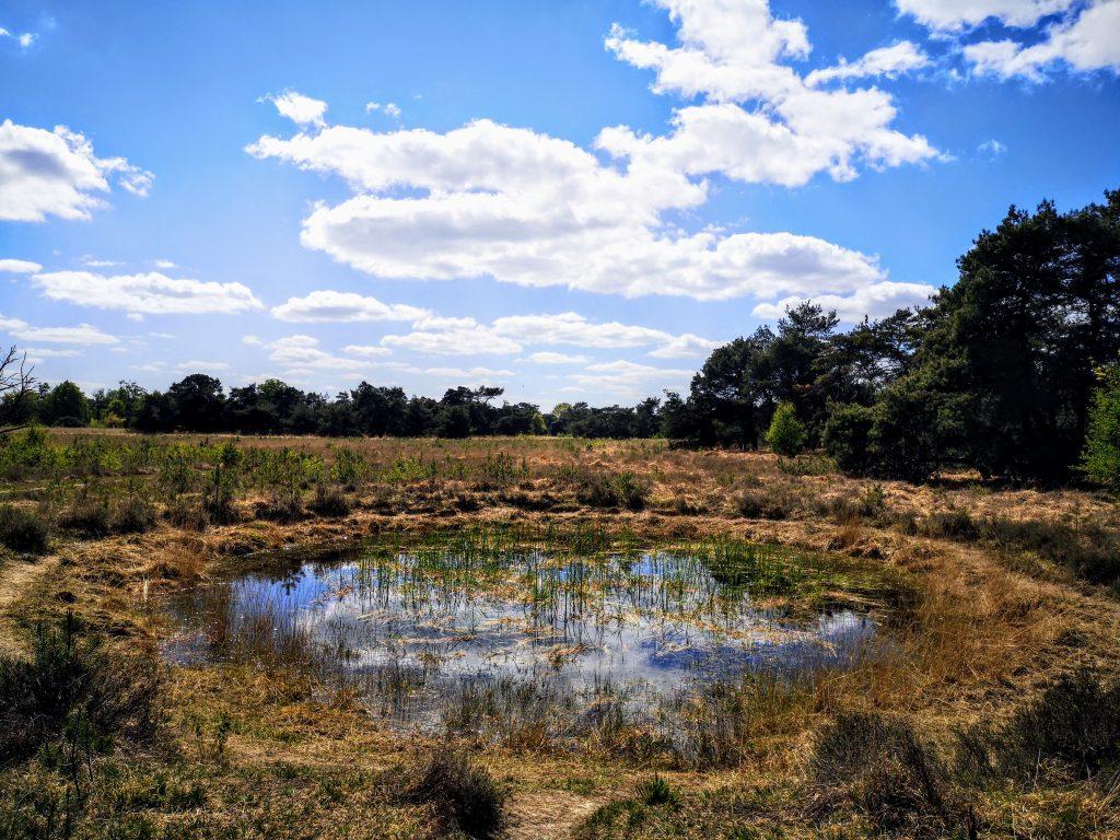 Sallandse Zandloper - Het Boetelerveld