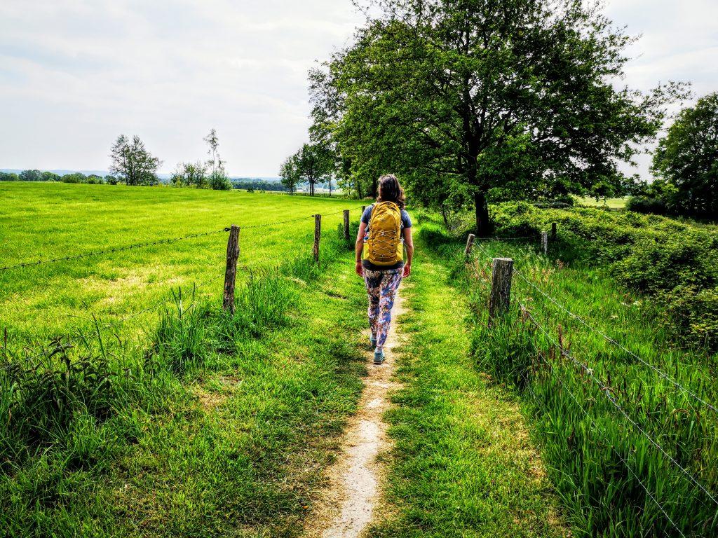 Wandelen in Twente - Stuwwalroute (12)