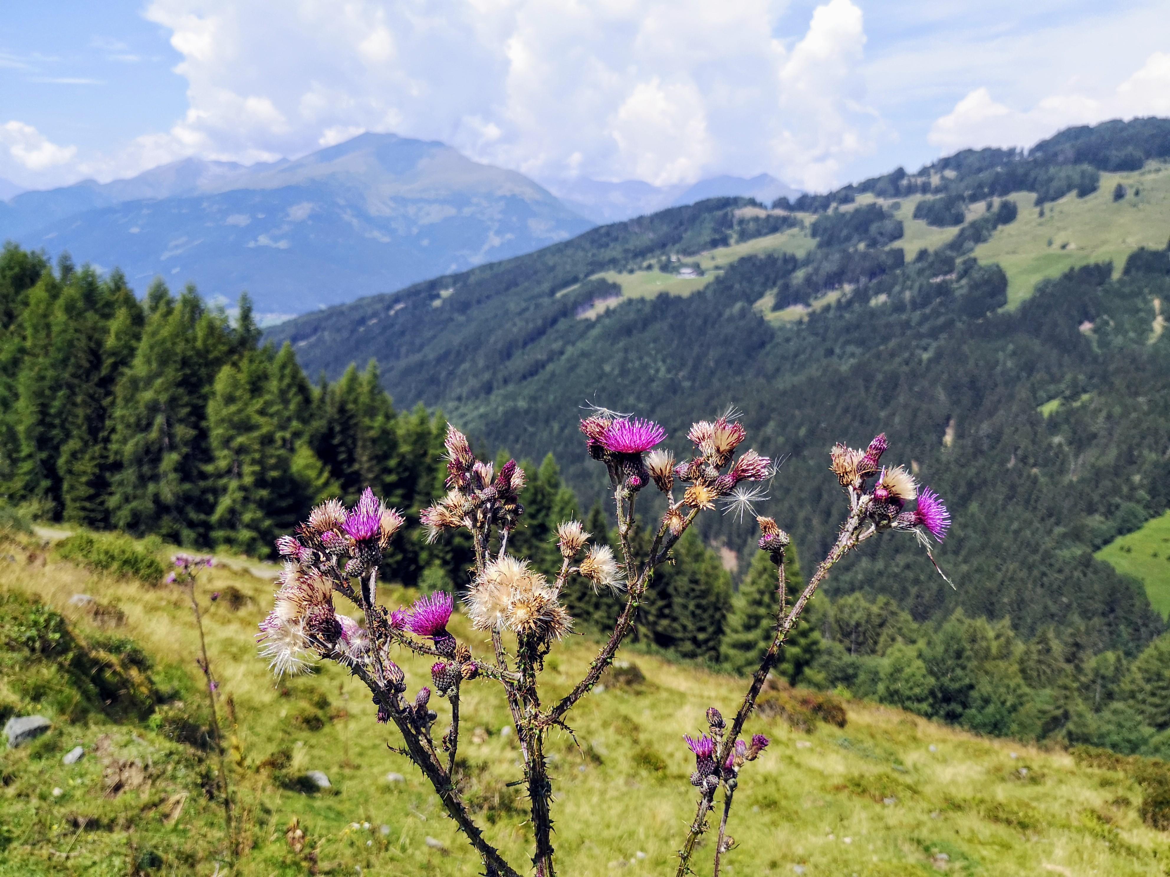 Alpe Adria Trail Etappe 12