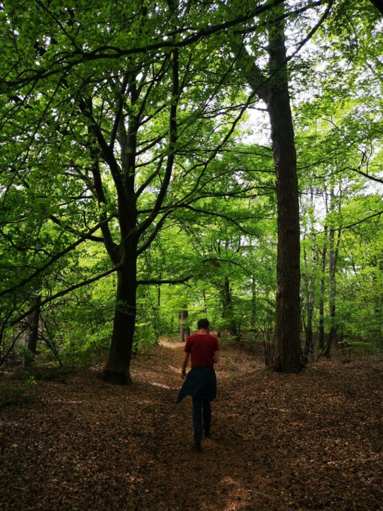 Hiking in the Footsteps of Krishnamurti - Ommen 13km - The Netherlands
