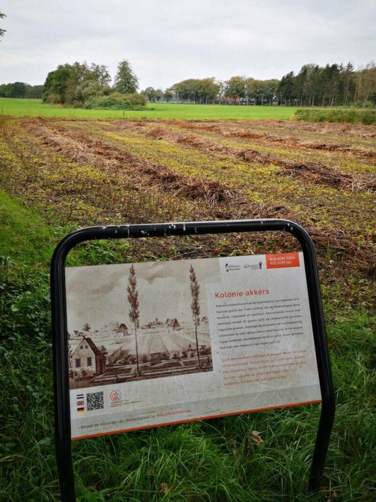 Wandelen bij Wilhelminaoord - 15km - Maatschappij van Weldadigheid