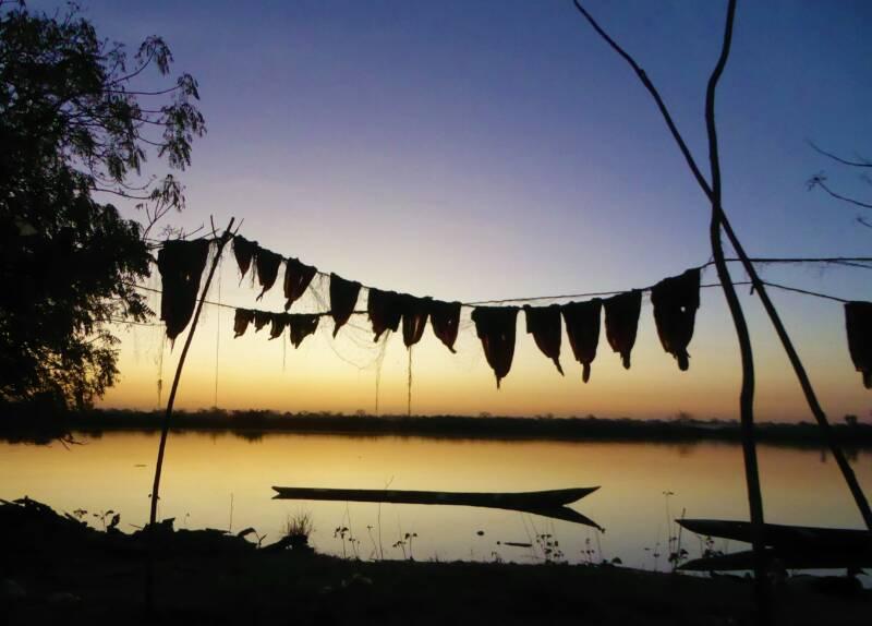 Nachtelijke avonturen - Sunset over de Rivier Gambia