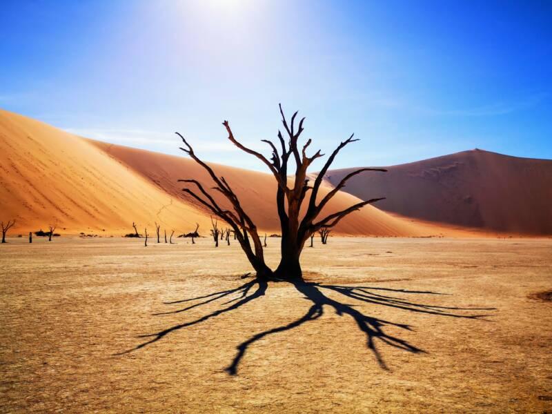 Deadvlei - Sesriem Namibia